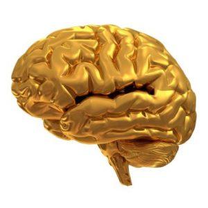 Gehirngerecht lernen, schneller lernen, einfache Konzentration